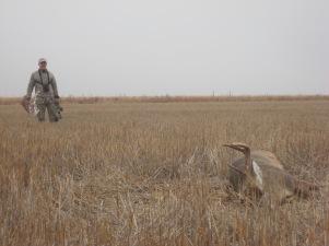 Successful Hunt