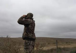Glassing For Whitetails