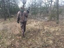 Tracking Whitetail Deer