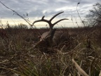 Why I Hunt: A Rebuttal