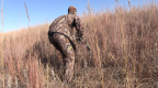 3 Tips For Spot And Stalk Whitetail Hunting With A Bow