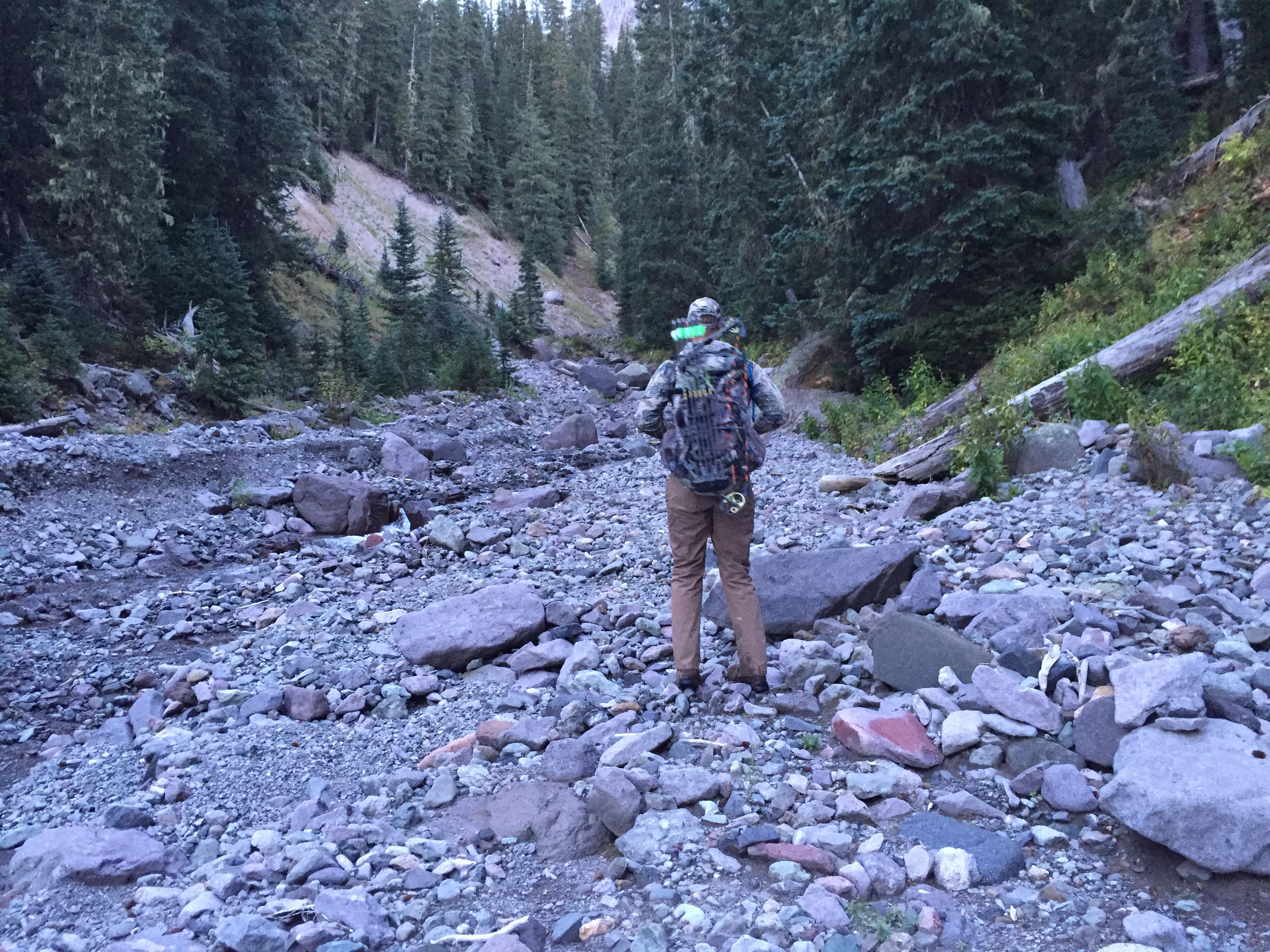 Colorado Archery Elk Hunting